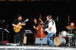 muziekfestival Elversele
